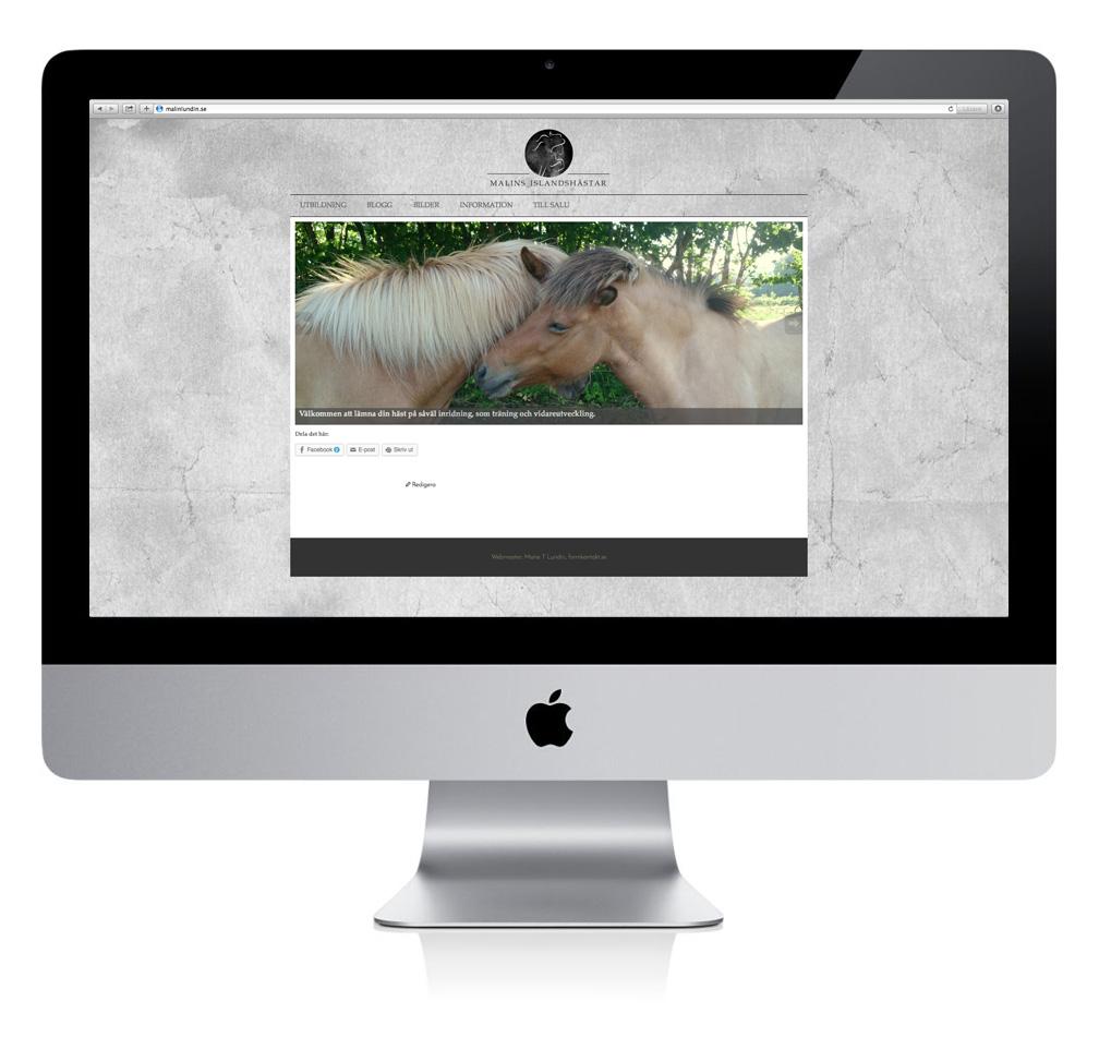 webbsida, islandshästar