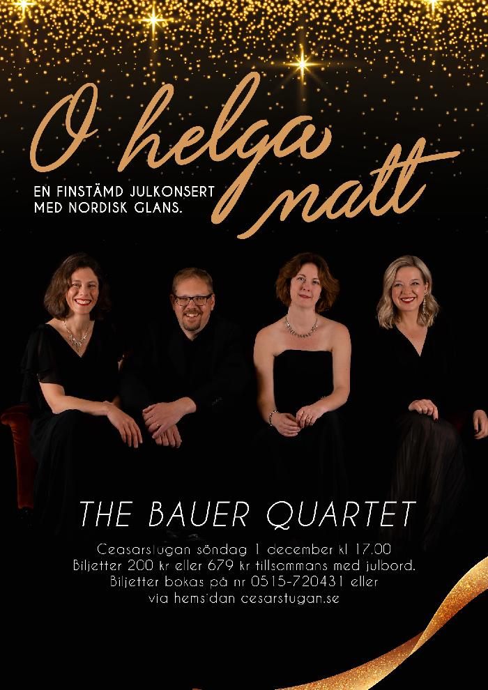 the Bauer quartet - grafisk profil och affischer till musiker